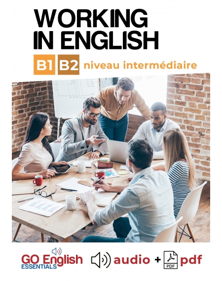 Working in English - Downloadable