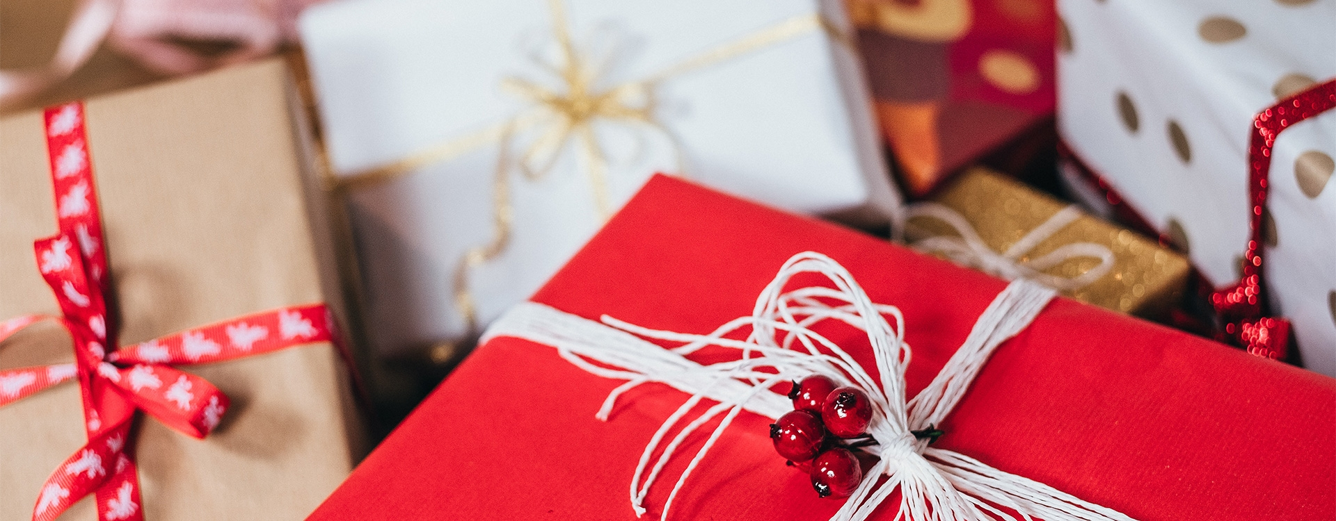 What is your dream present for next Christmas? / A1-A2